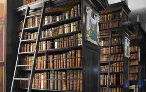 photographie des rayonnage de livres.;;